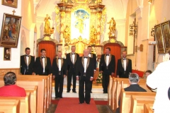 Koncert Okteta Gallus